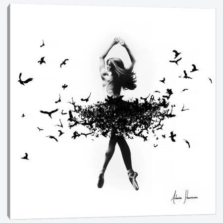 Free Bird Dance Canvas Print #VIN130} by Ashvin Harrison Canvas Print