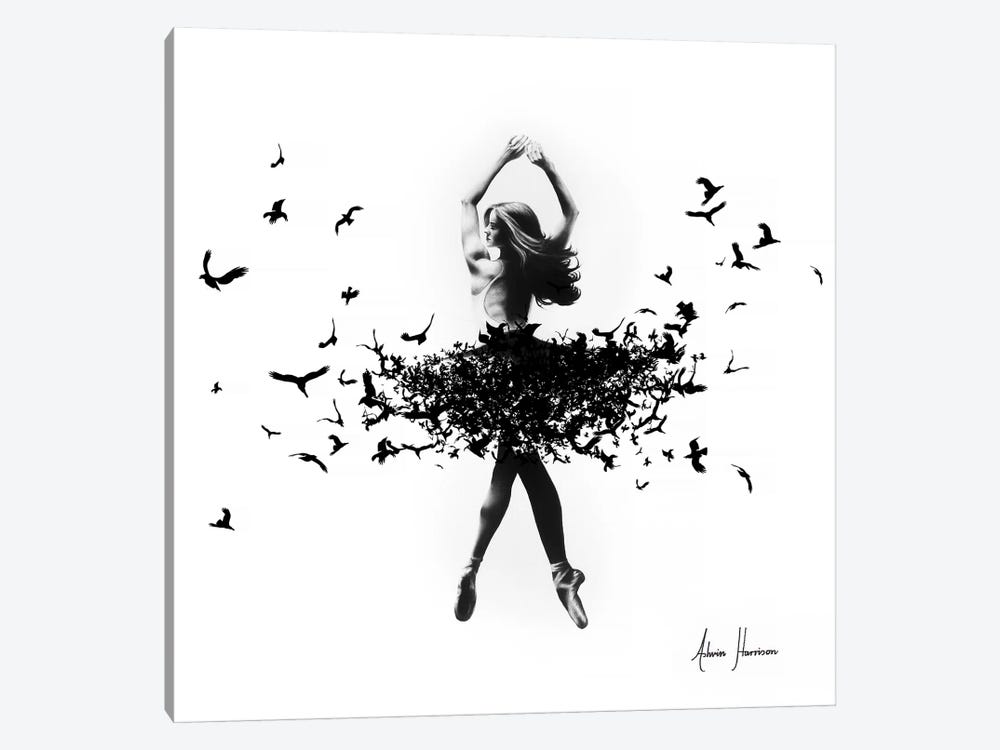 Free Bird Dance by Ashvin Harrison 1-piece Canvas Art