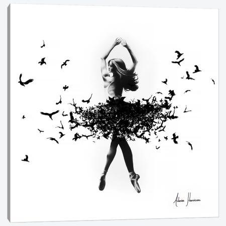 Free Bird Dance Canvas Print #VIN130} by Ashvin Harrison Canvas Print