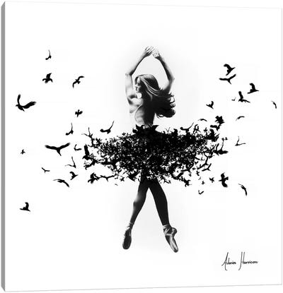 Free Bird Dance Canvas Art Print