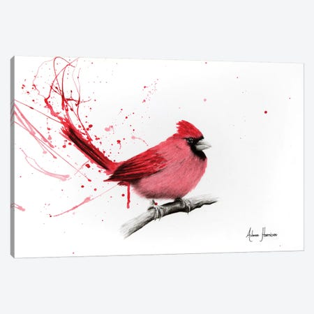 Curious Cardinal Canvas Print #VIN143} by Ashvin Harrison Canvas Wall Art