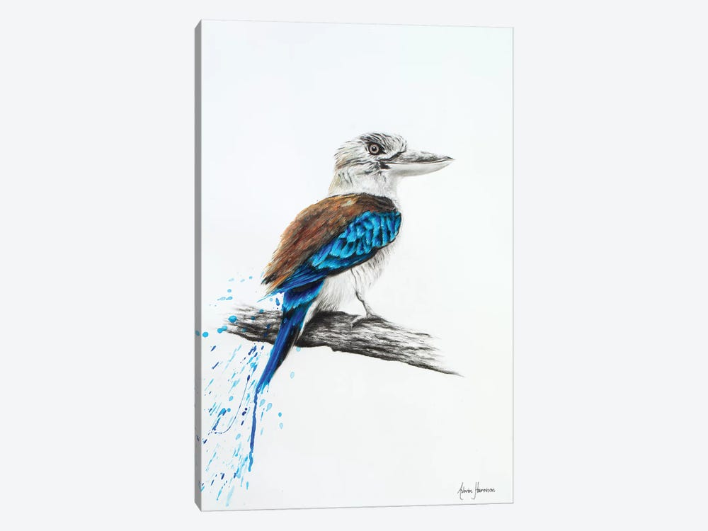 Blue Kookaburra 1-piece Canvas Art