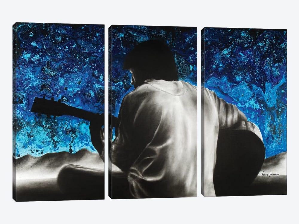 Symphony Of One by Ashvin Harrison 3-piece Canvas Art Print