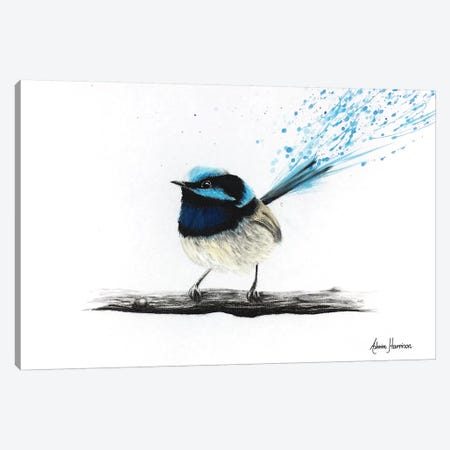 Afternoon Wren Canvas Print #VIN166} by Ashvin Harrison Art Print