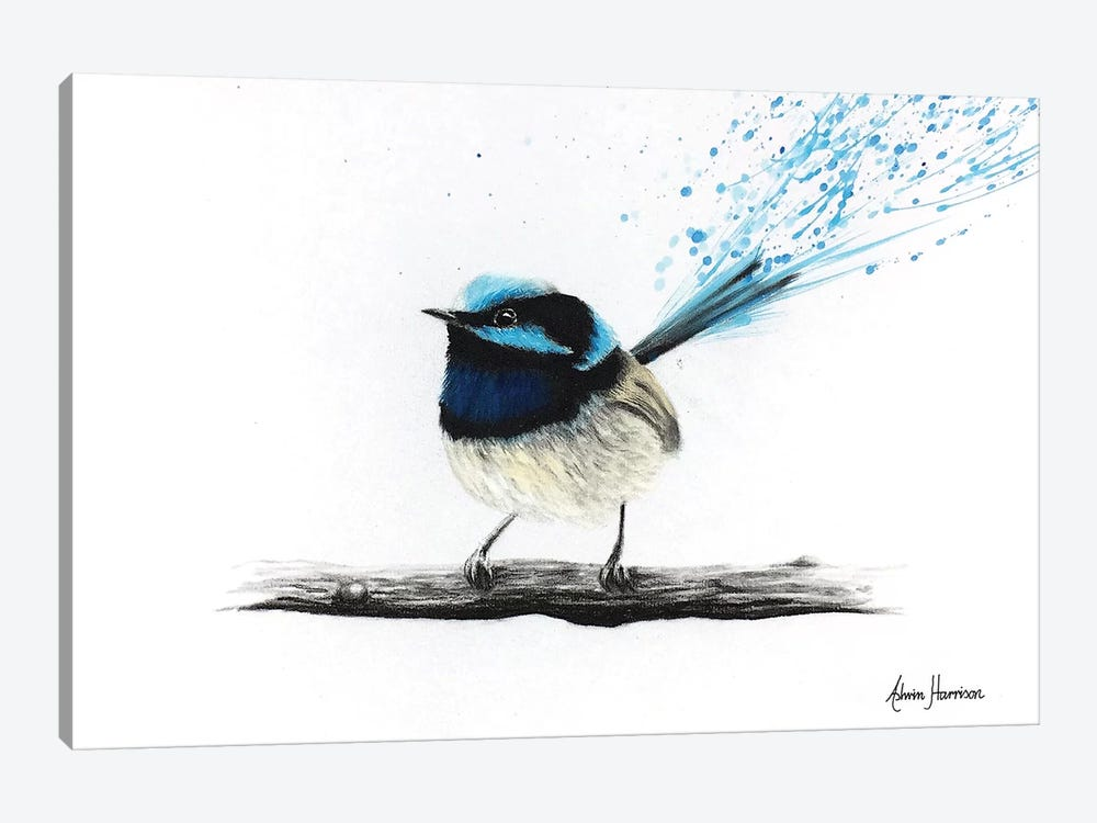 Afternoon Wren by Ashvin Harrison 1-piece Canvas Print