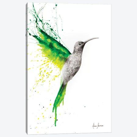 Emerald Sun Canvas Print #VIN169} by Ashvin Harrison Canvas Art