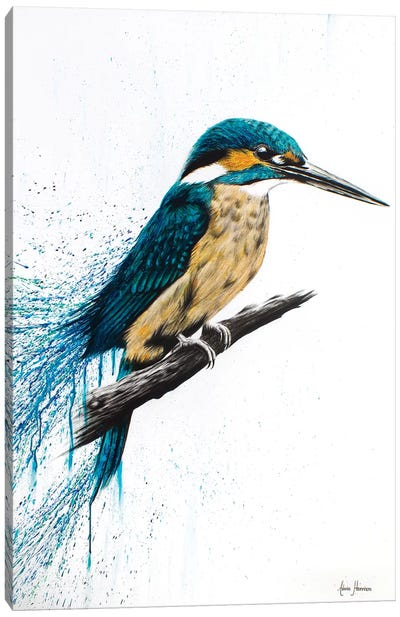 Enlightened Kingfisher Canvas Art Print