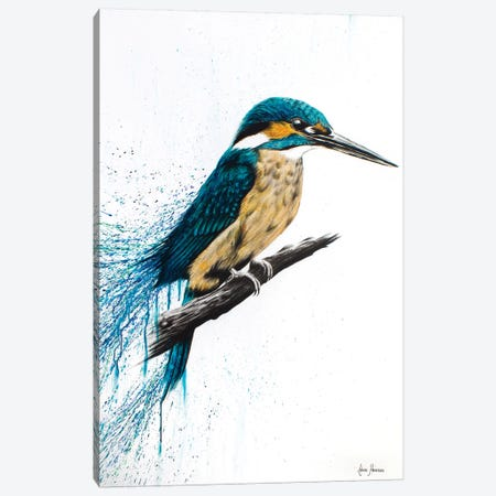 Enlightened Kingfisher Canvas Print #VIN170} by Ashvin Harrison Canvas Art Print