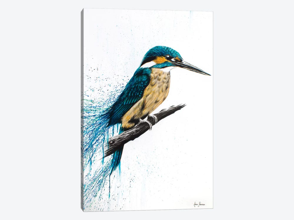 Enlightened Kingfisher by Ashvin Harrison 1-piece Canvas Artwork