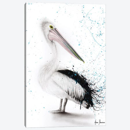 Proud Pelican Canvas Print #VIN197} by Ashvin Harrison Canvas Wall Art