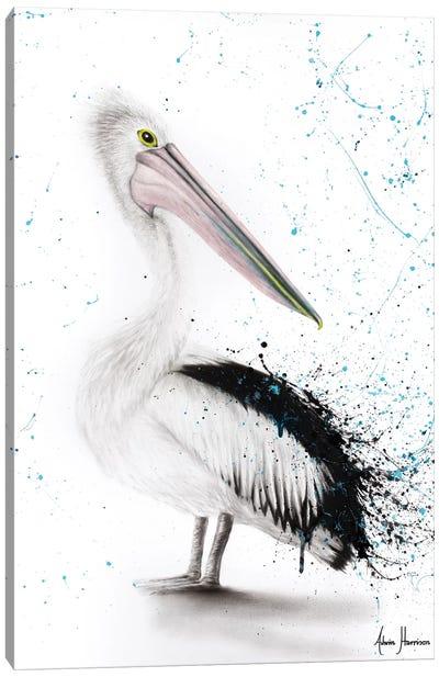Proud Pelican Canvas Art Print