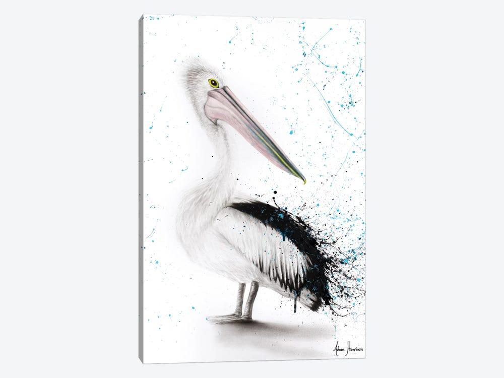 Proud Pelican by Ashvin Harrison 1-piece Canvas Print