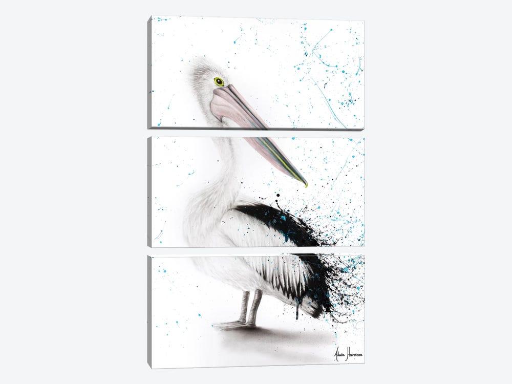 Proud Pelican by Ashvin Harrison 3-piece Canvas Print
