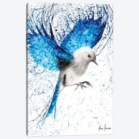 Mediterranean Wings Canvas Print #VIN214} by Ashvin Harrison Canvas Print