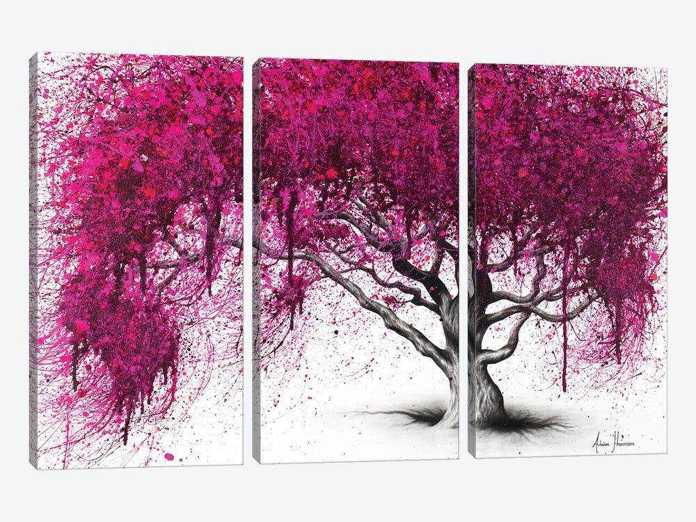 Pink Plum Park by Ashvin Harrison 3-piece Canvas Print
