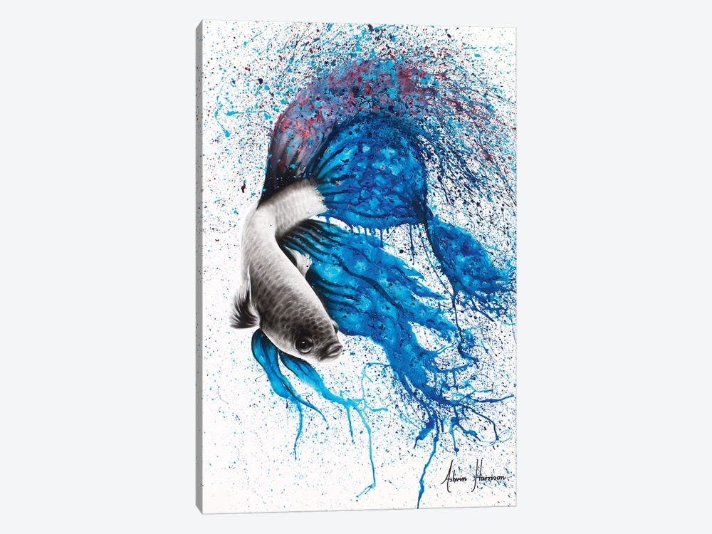 Dancing Gourami by Ashvin Harrison 1-piece Canvas Art