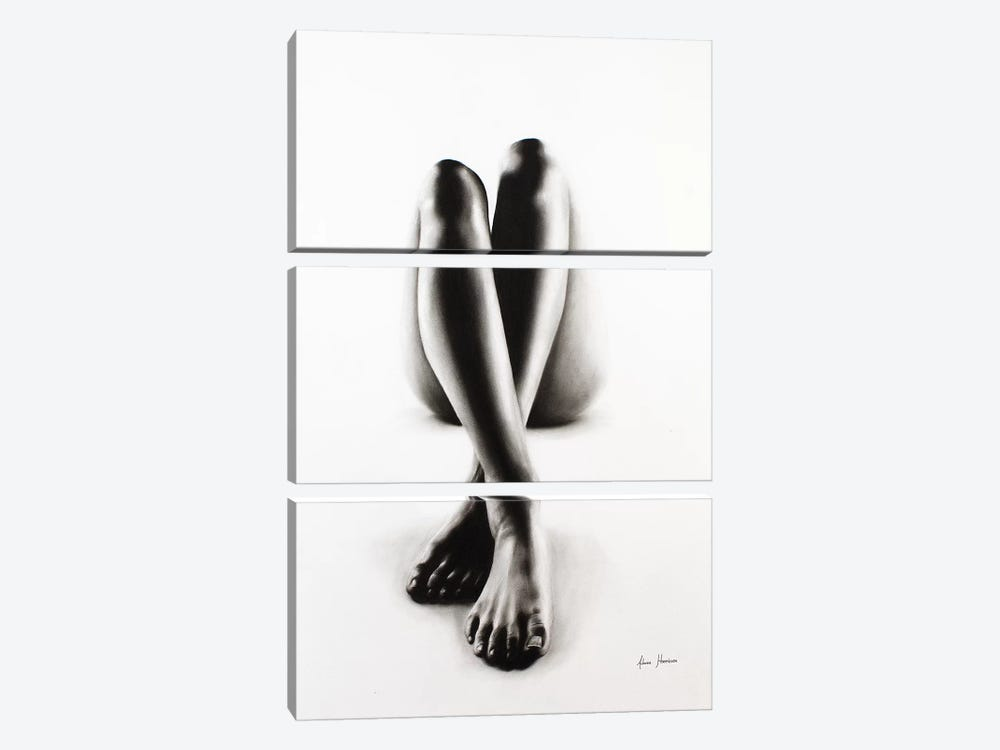 Nude Woman Charcoal Study 43 by Ashvin Harrison 3-piece Canvas Wall Art