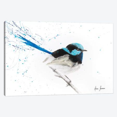 Tail in The Rain Canvas Print #VIN256} by Ashvin Harrison Canvas Art Print