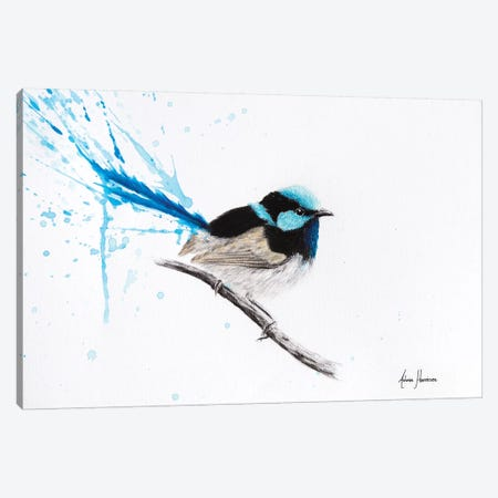 Wren Dreaming Canvas Print #VIN266} by Ashvin Harrison Canvas Artwork
