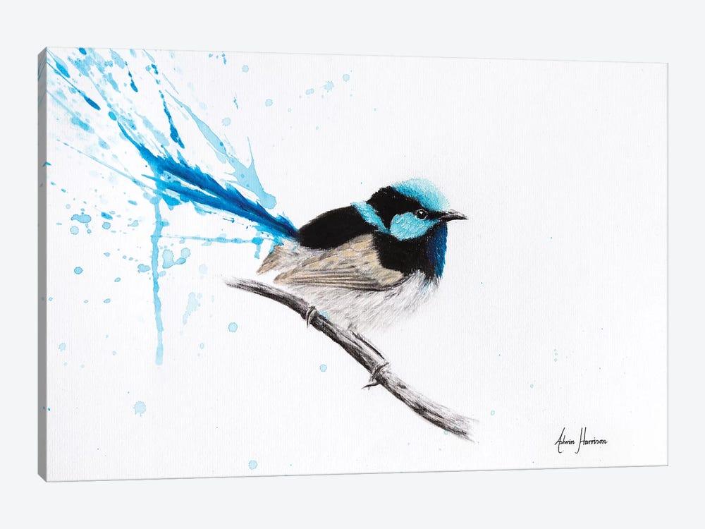 Wren Dreaming by Ashvin Harrison 1-piece Canvas Art Print