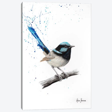 Wren Whisper Canvas Print #VIN267} by Ashvin Harrison Canvas Art