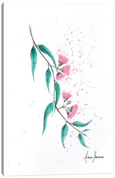 Eucalyptus Lush Canvas Art Print