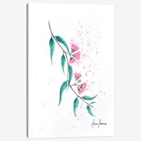 Eucalyptus Lush Canvas Print #VIN275} by Ashvin Harrison Canvas Print