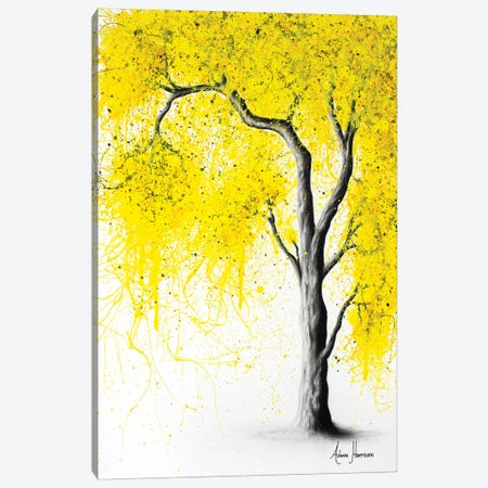 Fall Tree Trios Canvas Print #VIN276} by Ashvin Harrison Art Print