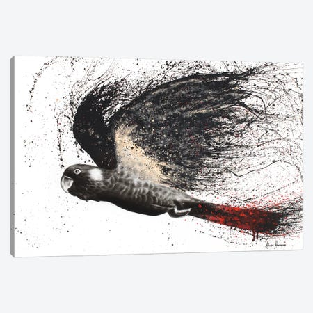 Fearless Black Cockatoo Canvas Print #VIN27} by Ashvin Harrison Canvas Artwork