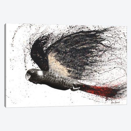 Fearless Black Cockatoo Canvas Print #VIN27} by Ashvin Harrison Canvas Artwork