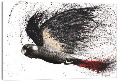 Fearless Black Cockatoo Canvas Art Print