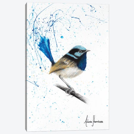 Moonlight Wren Canvas Print #VIN281} by Ashvin Harrison Art Print