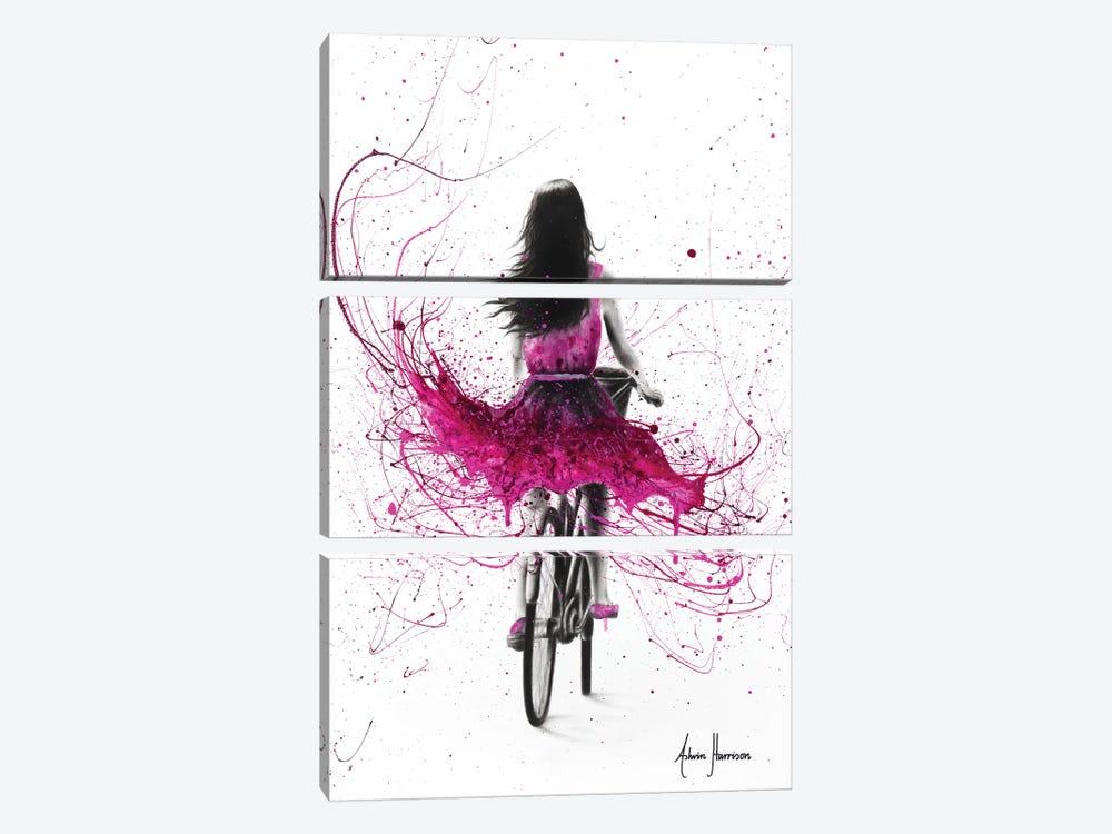 Quintessential Cycle by Ashvin Harrison 3-piece Canvas Print