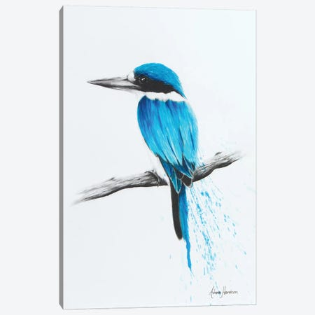 Feathered Friend Canvas Print #VIN28} by Ashvin Harrison Art Print