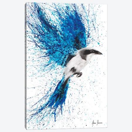 A New Direction Canvas Print #VIN2} by Ashvin Harrison Canvas Print