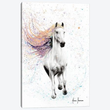 Horse Of Rhythm Canvas Print #VIN303} by Ashvin Harrison Canvas Wall Art