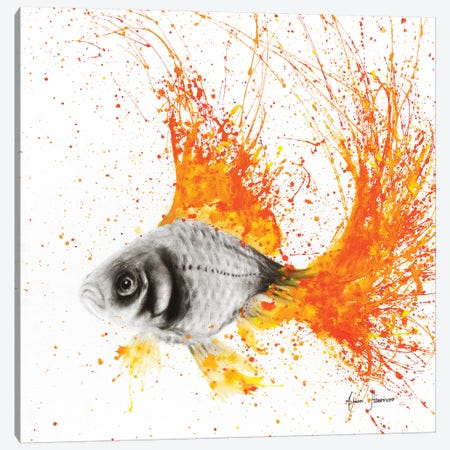Fish Flare Canvas Print #VIN30} by Ashvin Harrison Canvas Wall Art
