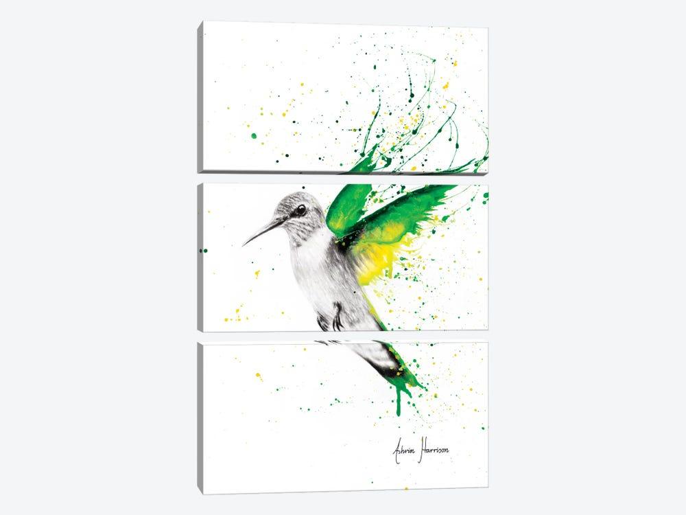 Bird of Emeralds by Ashvin Harrison 3-piece Canvas Art