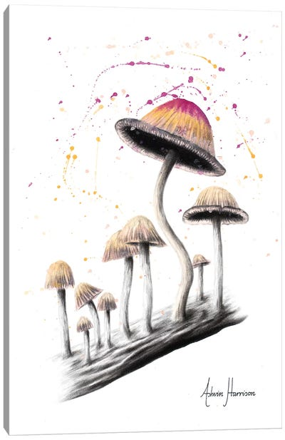 Mushroom Dance Canvas Art Print