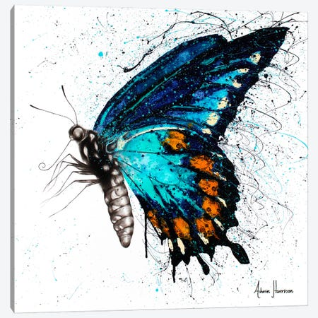 Butterfly Bliss Canvas Print #VIN339} by Ashvin Harrison Canvas Art Print