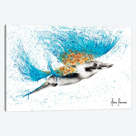 Clever Kookaburra Canvas Print #VIN340} by Ashvin Harrison Canvas Art