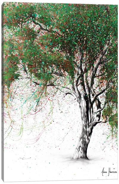 Guiding Gum Tree Canvas Art Print