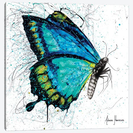 Morning Citrus Butterfly Canvas Print #VIN354} by Ashvin Harrison Canvas Artwork