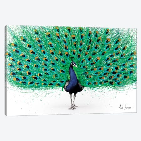 Proud Peacock Canvas Print #VIN361} by Ashvin Harrison Canvas Wall Art