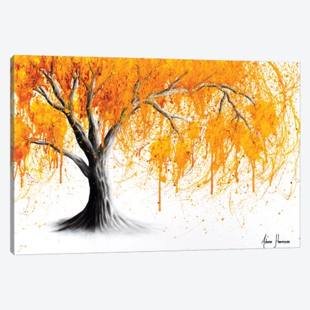Rusting Desert Tree Canvas Print #VIN365} by Ashvin Harrison Canvas Print