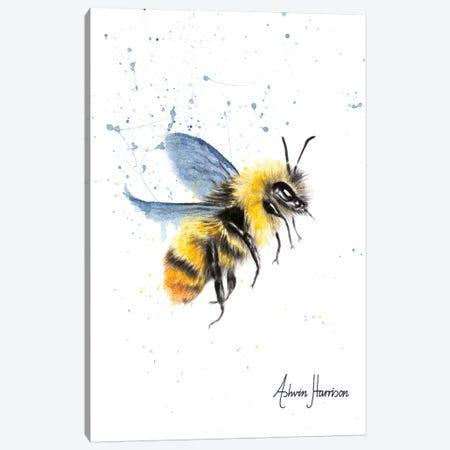 Sun Bee Canvas Print #VIN368} by Ashvin Harrison Canvas Artwork