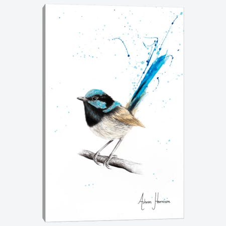 Wren Wisdom Canvas Print #VIN381} by Ashvin Harrison Canvas Artwork