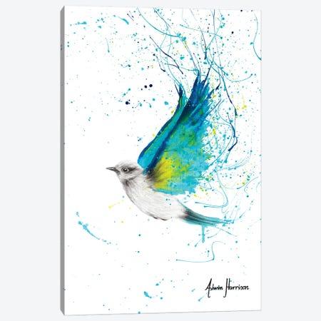 Humble Canvas Print #VIN403} by Ashvin Harrison Art Print