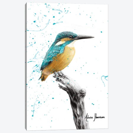 The Knowing Kingfisher Canvas Print #VIN425} by Ashvin Harrison Canvas Artwork