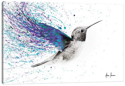 Hummingbird Garden Canvas Art Print